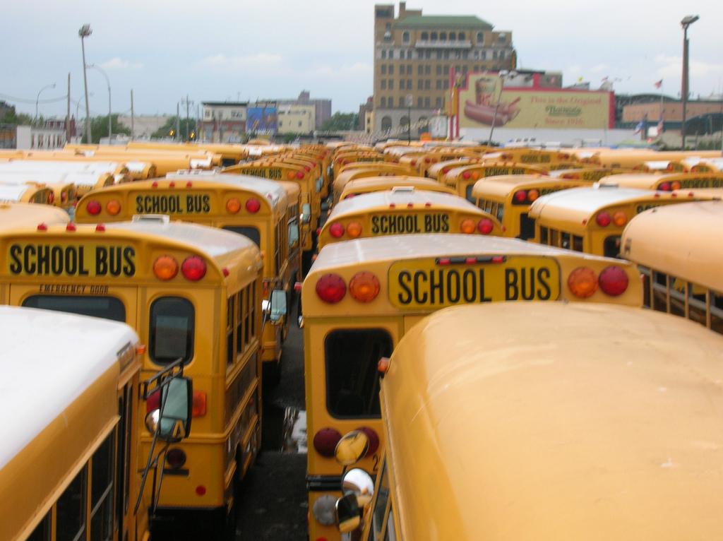 School Transportation - Busses