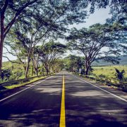 Road to Corporate Sustainability