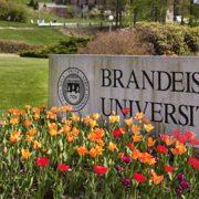 Brandeis University Campus Carpool Program